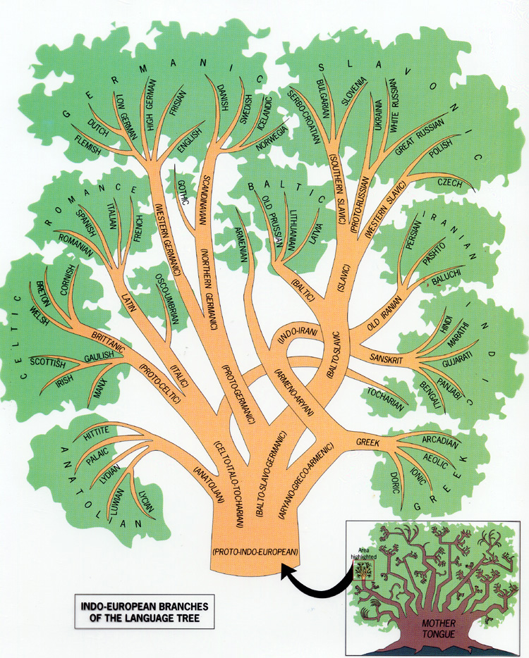 Language Family Tree